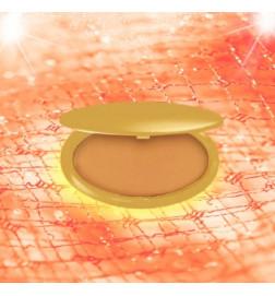 Fond de teint poudre perfection (Nutmeg)